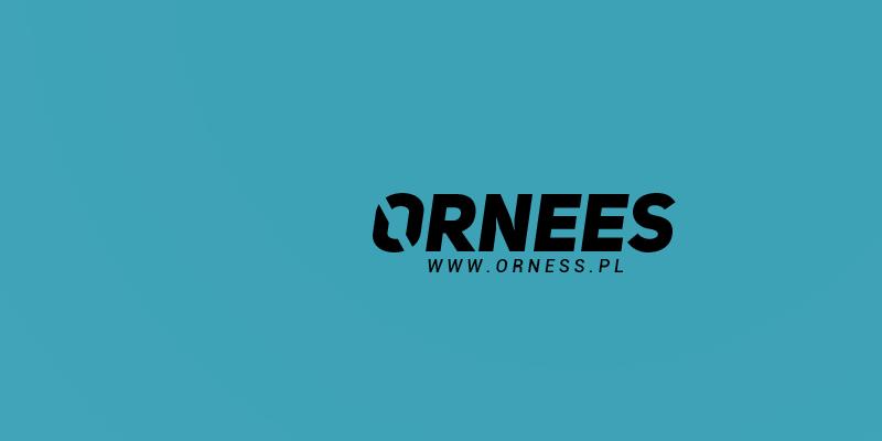 ornes2.png.41be59b7d62d35121152df430d341081.png