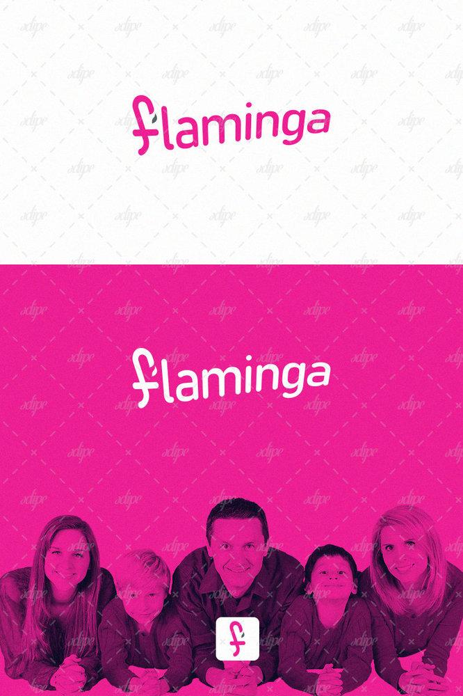 flaminga.jpg
